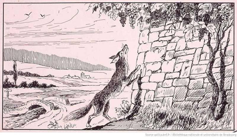 le renard et le raisin